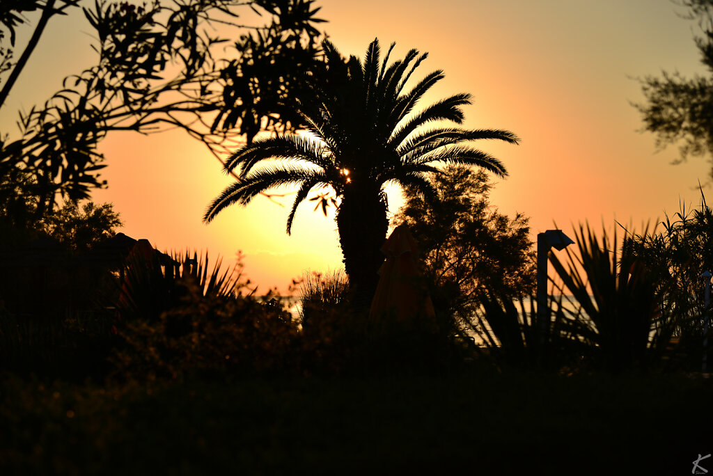 2014 - Korfu