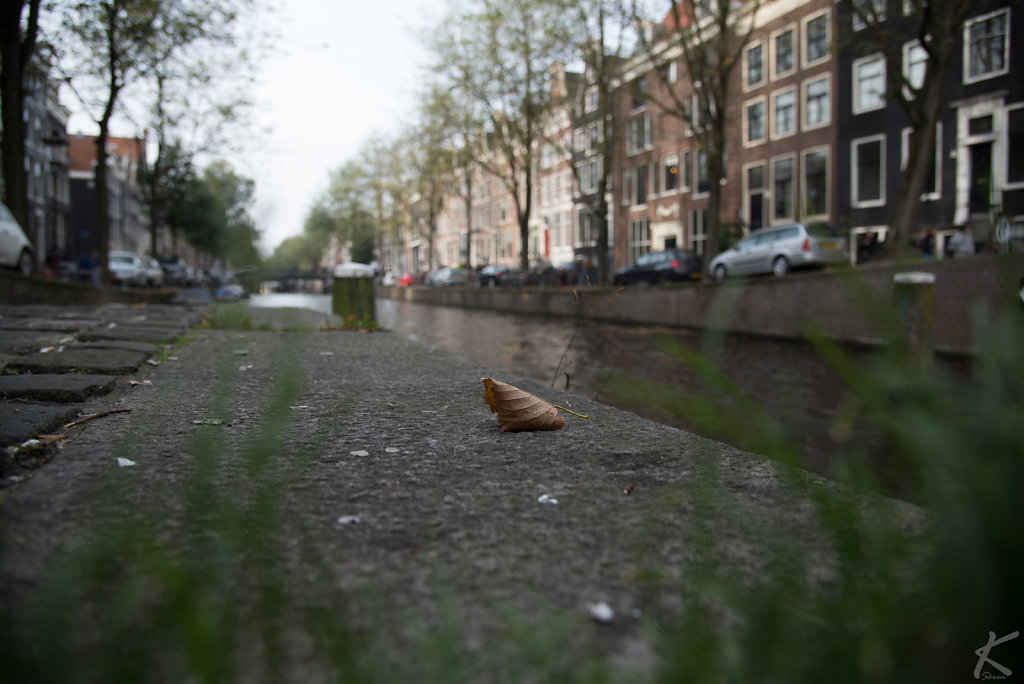 20171019-Amsterdam-0188.jpg